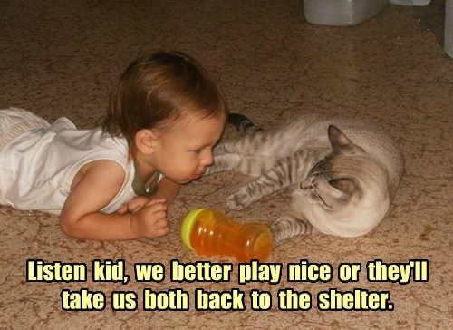 Listen  kid,  we  better  play  nice  or  they'll  take  us  both  back  to  the  shelter.