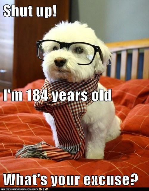 In Dog Years...