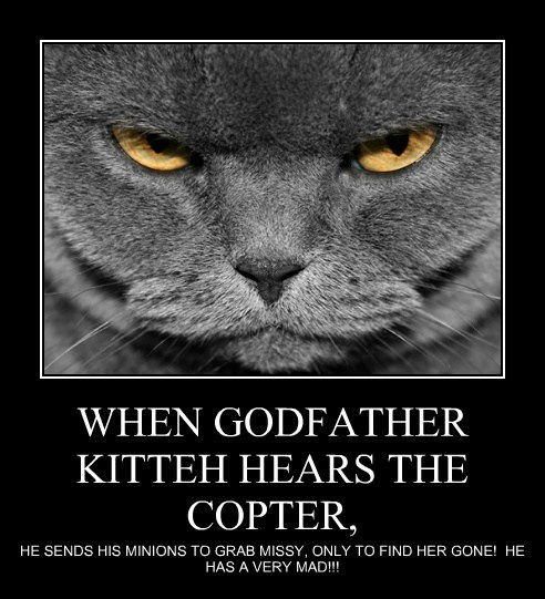 WHEN GODFATHER KITTEH HEARS THE COPTER,