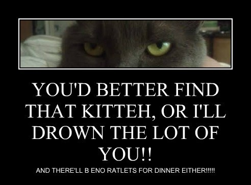 YOU'D BETTER FIND THAT KITTEH, OR I'LL DROWN THE LOT OF YOU!!
