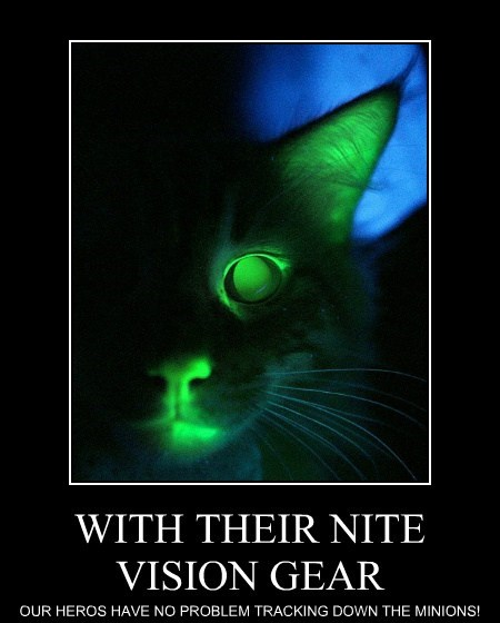 WITH THEIR NITE VISION GEAR