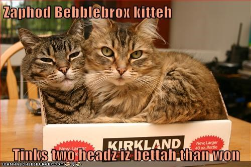 Zaphod Bebblebrox kitteh  Tinks two headz iz bettah than won
