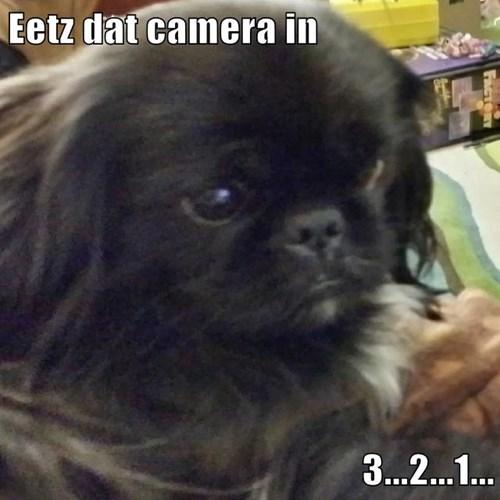 Eetz dat camera in  3...2...1...