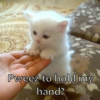 Pweez to hold my hand?