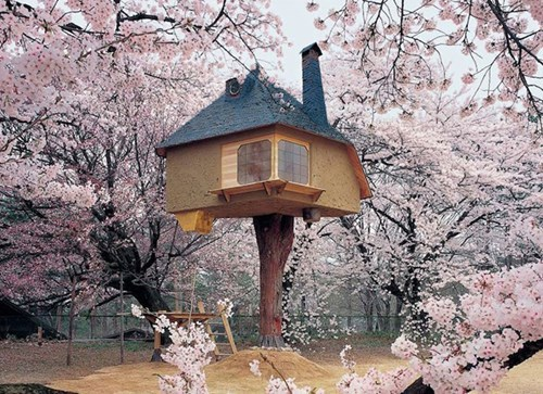 Classic: This Tree House is Absolutely Magical