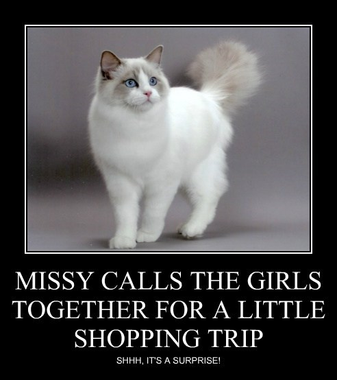 MISSY CALLS THE GIRLS TOGETHER FOR A LITTLE SHOPPING TRIP