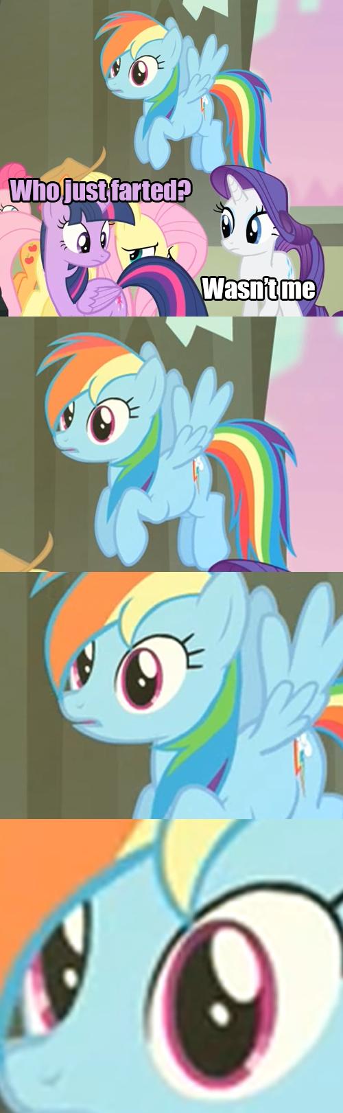 farts,dat face,MLP,rainbow dash