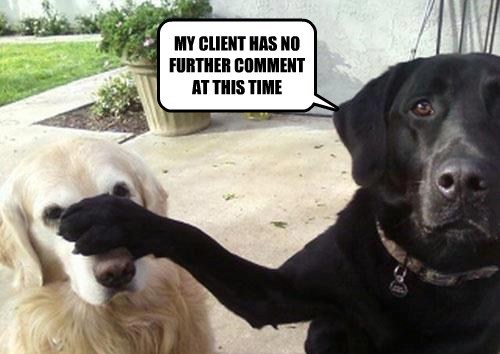 Pawsecuting Attorney