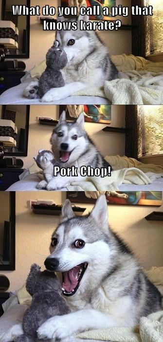 dogs,jokes,funny,puns,pig,punchline