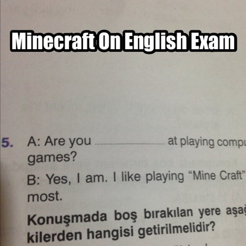 Everyone Loves Mine Craft