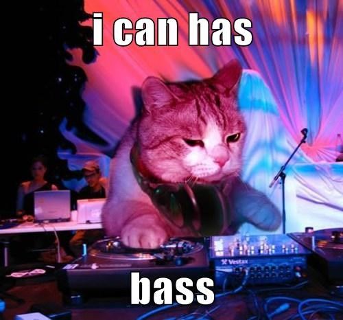 DJ Cat Says Don't be Afraid of the Bass