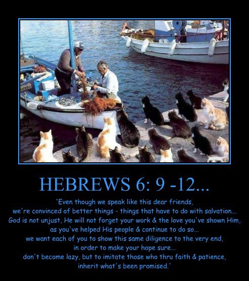 HEBREWS 6: 9 -12...