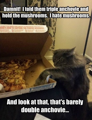 Damnit!  I told them triple anchovie and hold the mushrooms.  I hate mushrooms.