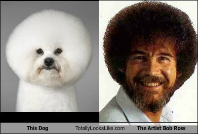 This Dog Totally Looks Like The Artist Bob Ross