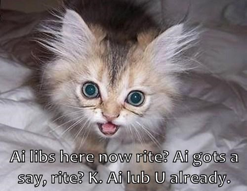 Ai libs here now rite? Ai gots a say, rite? K. Ai lub U already.