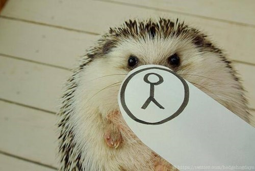 The Many Faces of a Hedgehog-Turned-Emoji