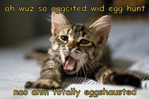 ah wuz so eggcited wid egg hunt  nao ahm totally eggshausted