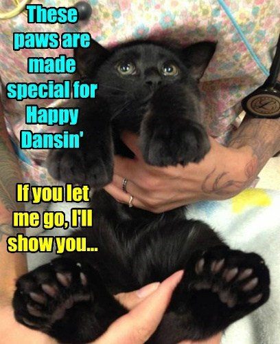 These paws are made special for Happy Dansin'