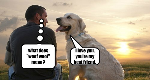 Dogs Speak the Language of Love