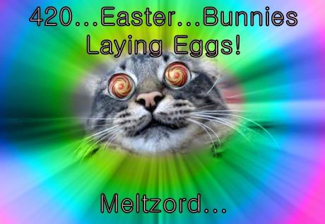 420...Easter...Bunnies Laying Eggs!  Meltzord...