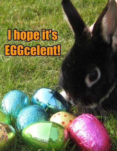 Hoppy Easter, everyone!
