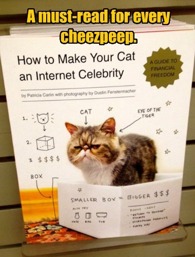 A must-read for every cheezpeep.