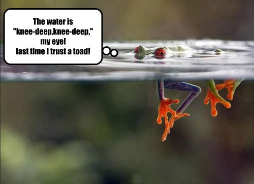 """The water is  """"knee-deep,knee-deep,"""" my eye! last time I trust a toad!"""