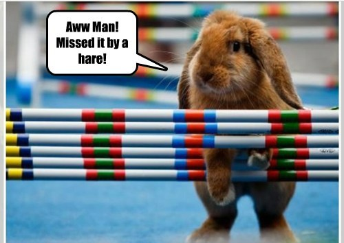 Aww Man! Missed it by a hare!