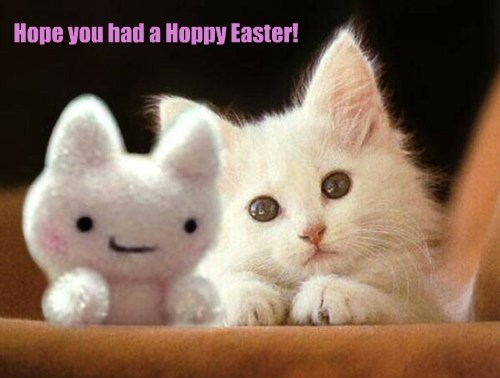 Hope you had a Hoppy Easter!