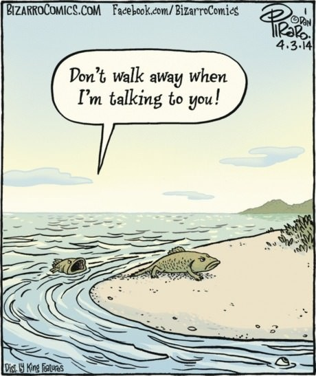 arguments,evolution,web comics