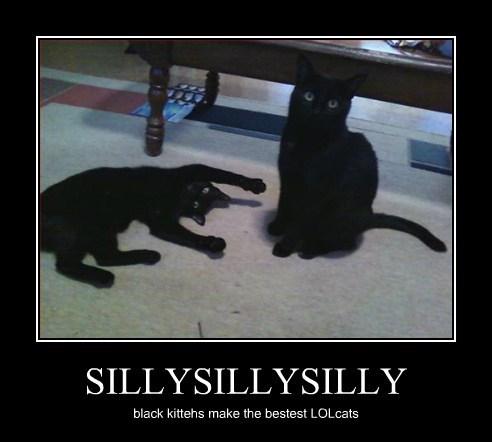 SILLYSILLYSILLY
