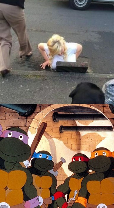 funny,sewer,teenage mutant ninja turtles