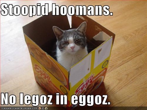 Stoopid hoomans.    No legoz in eggoz.