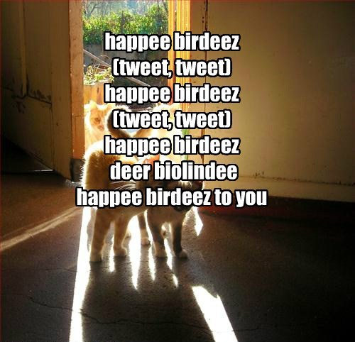 happee birdeez (tweet, tweet) happee birdeez (tweet, tweet) happee birdeez  deer biolindee happee birdeez to you