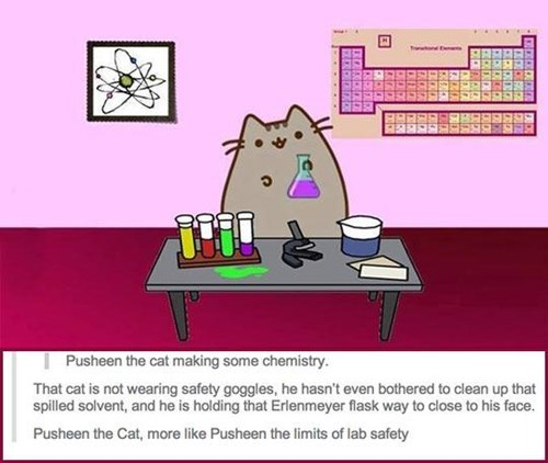 Do You Not Remember What Happened to Carol, Pusheen?
