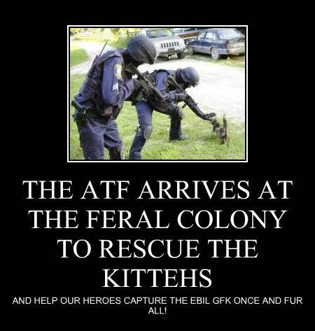 THE ATF ARRIVES AT THE FERAL COLONY TO RESCUE THE KITTEHS
