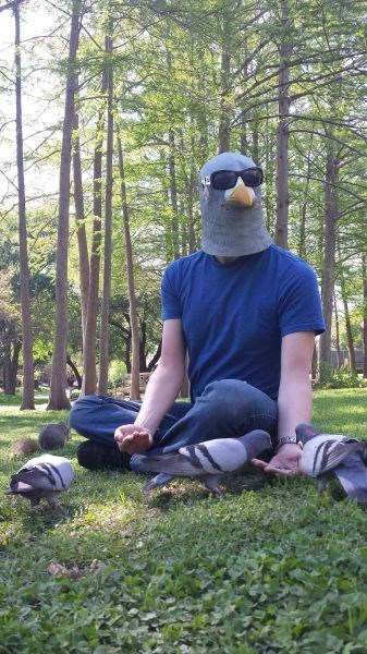 pigeon,sunglasses,poorly dressed,mask,pig,g rated