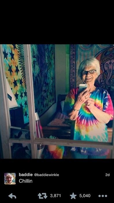 twitter,grandma,chinchilla