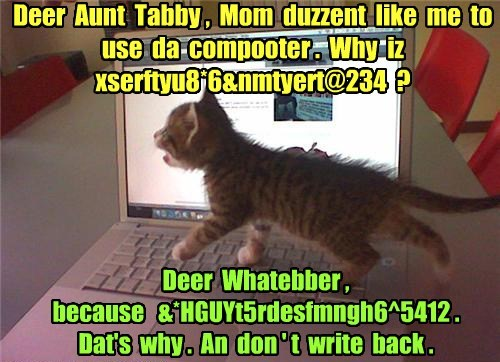 Aunt Tabby needs a stint at the Discreet Rest Home.