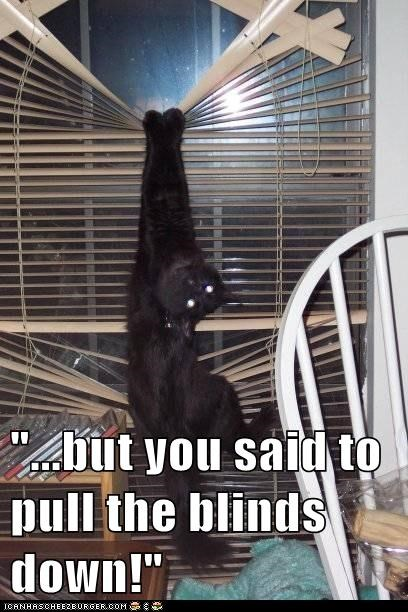 """...but you said to pull the blinds down!"""