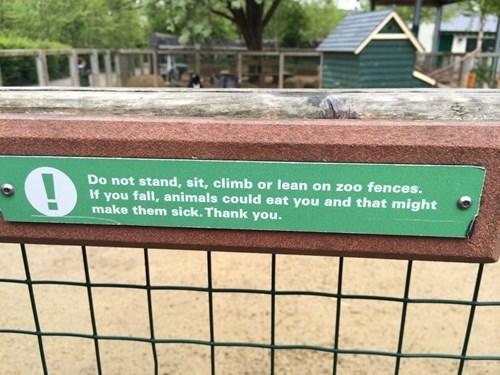 Dublin Zoo Has Their Priorities in Order