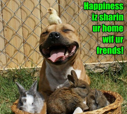 Happiness iz sharin  ur home  wif ur frends!
