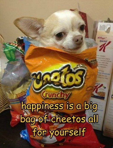 happiness is a big bag of cheetos all for yourself