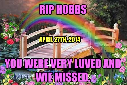 RIP HOBBS     YOU WERE VERY LUVED AND WIE MISSED.