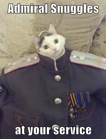 Admiral Snuggles  at your service