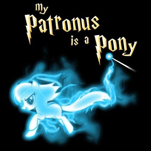 MLP,Harry Potter,tshirts