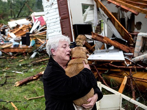 A Woman Finds Her Dog Alive and Healthy Amongst Tornado Wreckage in Mississippi