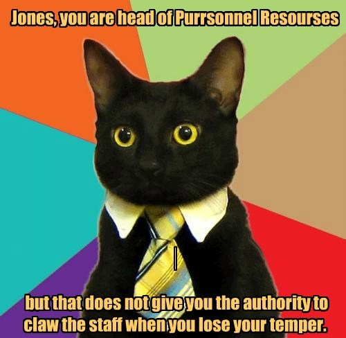 Jones, you are head of Purrsonnel Resourses              but that does not give you the authority to claw the staff when you lose your temper.