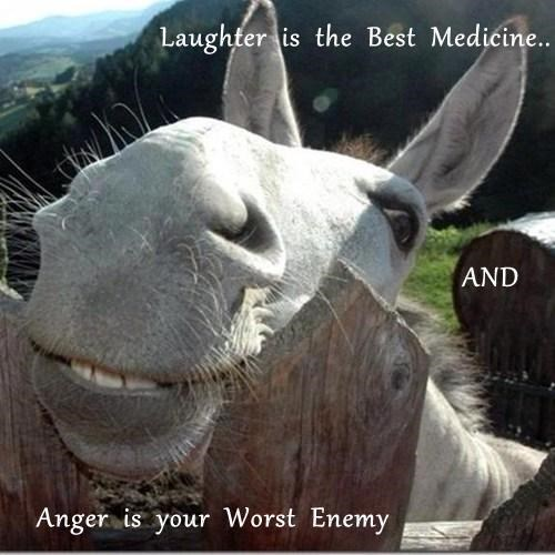 Laughter  is  the  Best  Medicine..                                                           AND     Anger  is  your  Worst  Enemy
