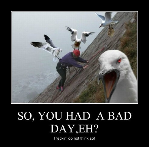SO, YOU HAD  A BAD DAY,EH?